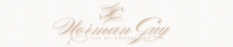 Norman Guy Photography logo
